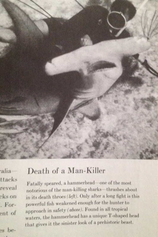 Came across this Time Life book published in the early 70s depcicting what we now know as a shy shark as the enemy  and the man that killed it a hero