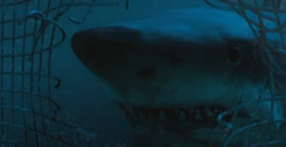 Skyler Thomas takes an ecological approach when reviewing Hollywood's animal-based horror movies, especially Jurassic World, The MEG, and all shark movies in a special edition of Shark Minutes.